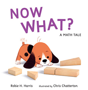 NOW WHAT? A Math Tale